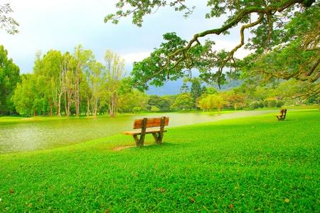 Panoramic view of public lake garden at Taiping, Perak, Malaysia Stock Photo