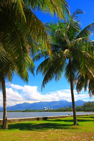 Beautiful landscape during morning time at Likas Beach, Kota Kinabalu, Sabah, Malaysia Stock Photo - 13319458