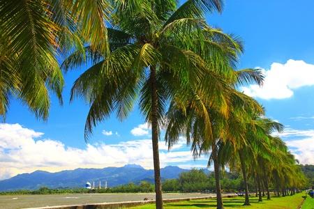 Beautiful landscape during morning time at Likas Beach, Kota Kinabalu, Sabah, Malaysia photo
