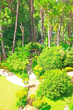 Landscape view of public garden at Kundasang Ranau, Sabah, Malaysia Stock Photo - 13368491