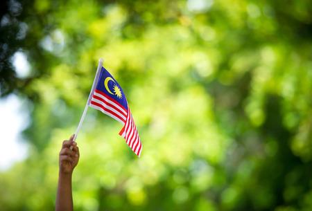 bandera blanca: Mano que agita la bandera de Malasia durante día de la independencia.