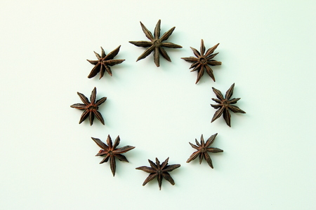 badian: The stars of anise in the circle.