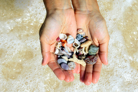 beachcombing: Travel to island Koh Larn, Thailand. Two hands with a different seashells and stones on the sea beach background in the sunny summer weather.