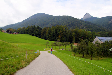 wolfgang: Travel to Sankt-Wolfgang, Austria. The road between fields with the houses and the mountains on the background.