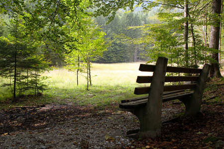 Travel to Sankt-Wolfgang, Austria. The bench in the mountains forest in the sunny day. Stock Photo