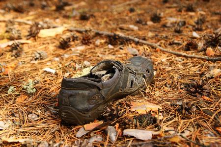 ロシア、シベリア。フォレスト内の芝生の上の古い靴。