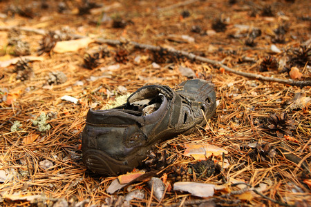 Russia, Siberia. Old shoe on a grass in a forest.