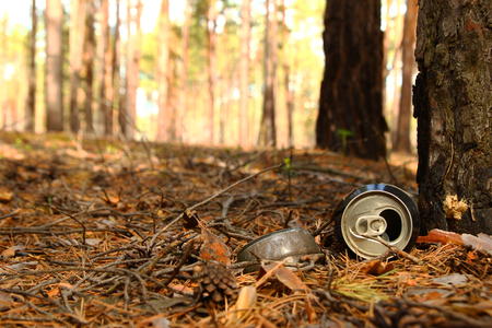 Russia, Siberia. Tin can and glass bottle on a grass in a pine forest. Stock Photo