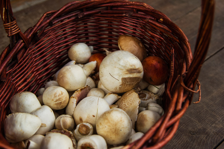 The brown basket with champignons on a wooden background, top view. Russia, Siberia.