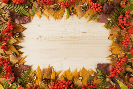 Frame from dry colorful autumn leaves, dry and fresh mushrooms, fresh rose hips and rowanberry on the wooden background, top view.