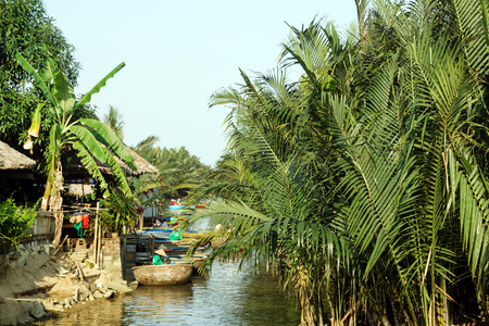 View on a river with traditional Vietnamese round boats between coconut palm trees. Hoi An, Vietnam. Stockfoto