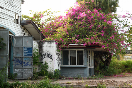 Chiang Mai, Thailand - December 25, 2017: View on administrative building in abandoned women prison.