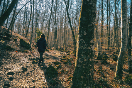 A girl walking through a forest of bare trees