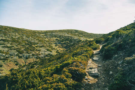 Landscape of some deserted hills covered with green shrubs