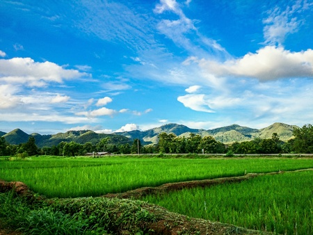 Sky, mountain and paddy field Stock Photo
