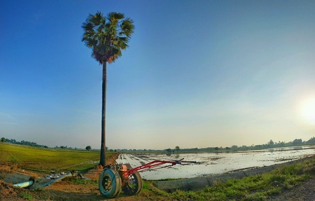 the plough: Wheel plough at paddy field