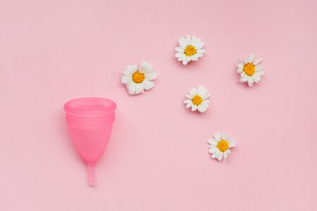 pink menstrual cup and chamomile flowers isolated on rose background, menstruation cycle, women gynecological health and intimate hygiene concept, zero waste product