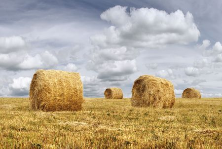 Rural landscape scene of four dry cereal haystacks and boundless sky with clouds
