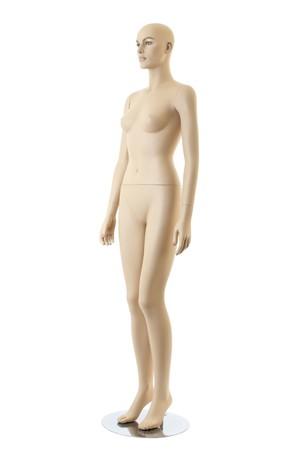 anatomycal female mannequin