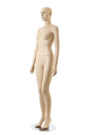 anatomycal female mannequin