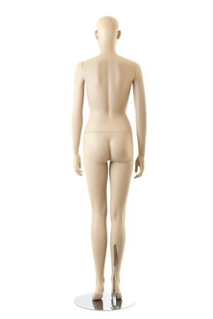 anatomycal female mannequin. Isolated on white background
