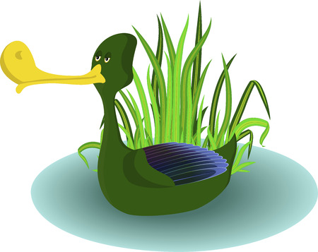 Green drake in small pond with fresh sedge at the background. Used blends and opacity masks Vector