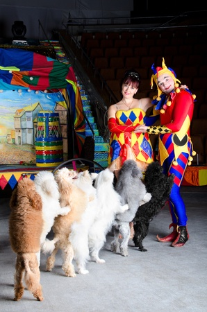Smiling clowns are embracing each other and looking at the camera. Group of small dogs is standing in a chain. Retro carriage with the painting of the old town