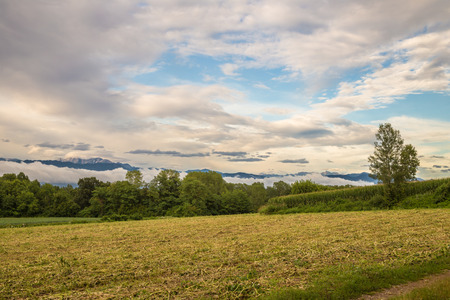 the fields of italy with mountains behind Stock Photo