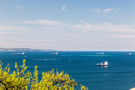 the gulf: spring time in the gulf of trieste