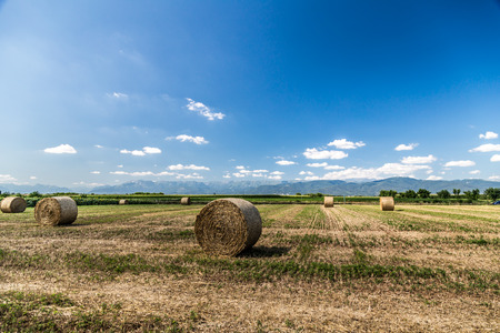 storm is coming on a field with hay bales Stock Photo