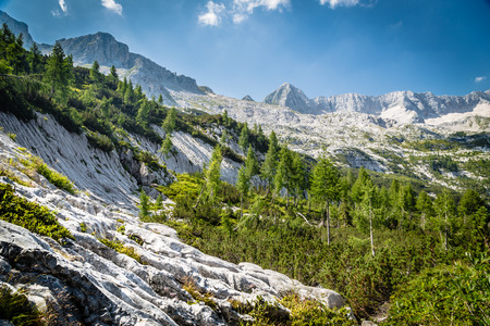 ices: an alpine view on a summer day in Italy