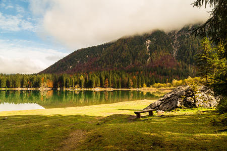 Fall in the italian alps in a misty day