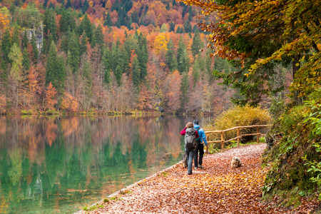 two girls walking in the forest in the italian alps
