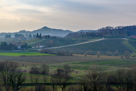 The sun goes down in the vineyards of Friuli Venezia-Giulia Stock Photo