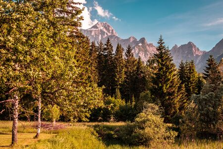 Summer day in an alpine valley of Friuli Venezia-Giulia, Italy