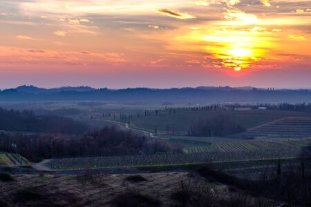 The sun goes down in the vineyards of Friuli Venezia-Giulia Banco de Imagens