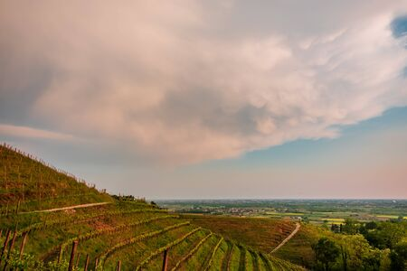 Storm in the vineyards of Friuli Venezia-Giulia, Italy