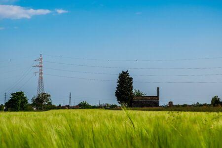 Fields of Friuli Venezia-Giulia in a spring day Banco de Imagens