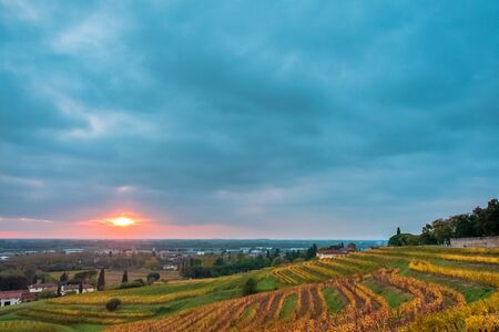 Die Sonne geht unter in den Weinbergen von Friaul-Julisch Venetien