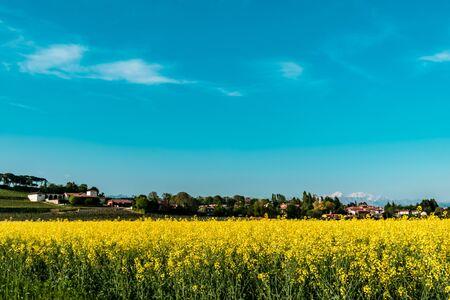 Italian countryside in a sunny spring day 版權商用圖片