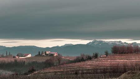 Foggy winter sunrise in the collio friulano, italy