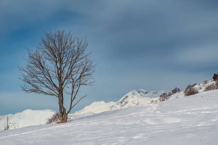 On the top of Mount Matajur for a beautiful ski experience. Udine province, Friuli-Venezia Giulia region, Italy