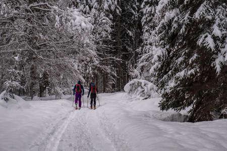 On the Strugova valley on the Mount Mangart, for a beautiful ski experience. Udine province, Friuli-Venezia Giulia region, Italy
