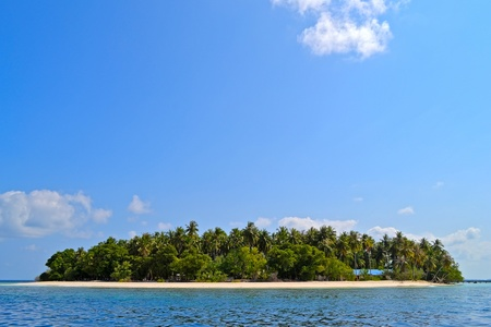 A View at Maldivian tropical island photo