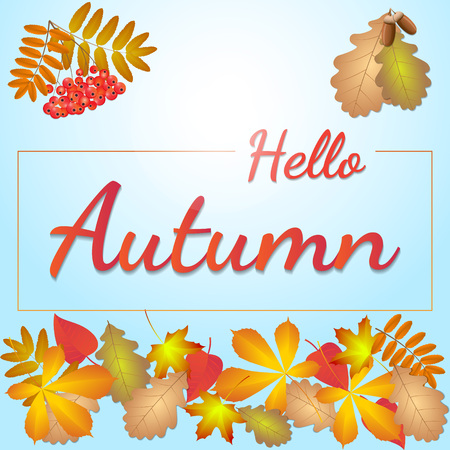 hello autumn inscription on a background of autumn leaves Illustration