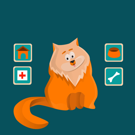 meow: Cute fluffy ginger cat sits alone on a blue background