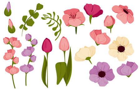 Spring set with flowers, bright colorful flowers and tulips. Suitable for templates, stickers and icons. .vector illustration.