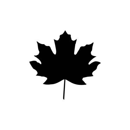 Maple leaf icon vector template design trendy