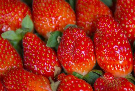 イチゴのフルーツ。選択と集中とクローズ アップ ショット
