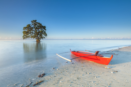 単一のツリー赤ボートで一人で立って
